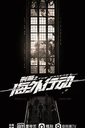 刑警之海外行动海报
