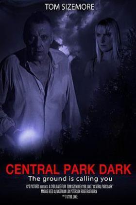 暗黑中央公园海报