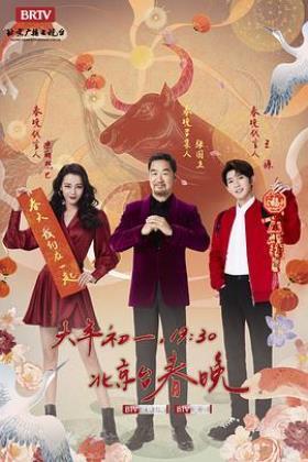 2021年北京卫视春节联欢晚会海报