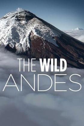 安第斯山脉