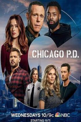 芝加哥警署第八季