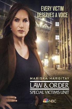 法律与秩序:特殊受害者第二十二季在线观看