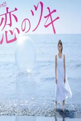 恋之月海报