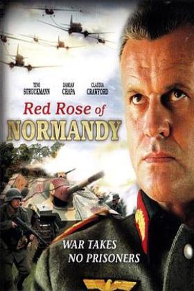 诺曼底红玫瑰海报