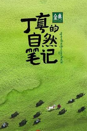 丁真的自然笔记海报