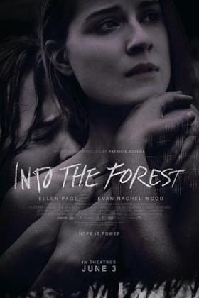 森林深处海报