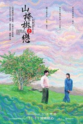 山楂树之恋海报