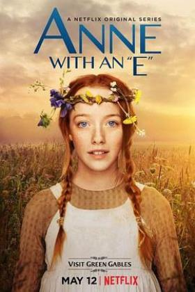 小小安妮第一季海报
