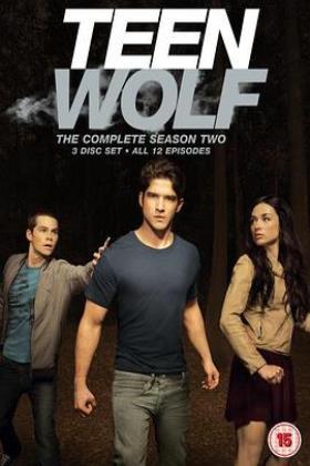 少狼第二季海报