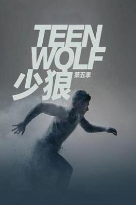 少狼第五季海报