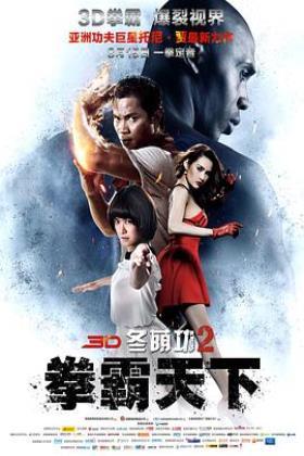 冬荫功2:拳霸天下海报