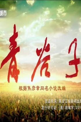 青谷子张一山版海报