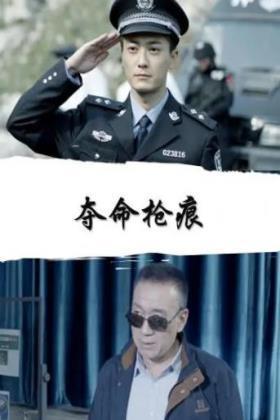 夺命枪痕海报