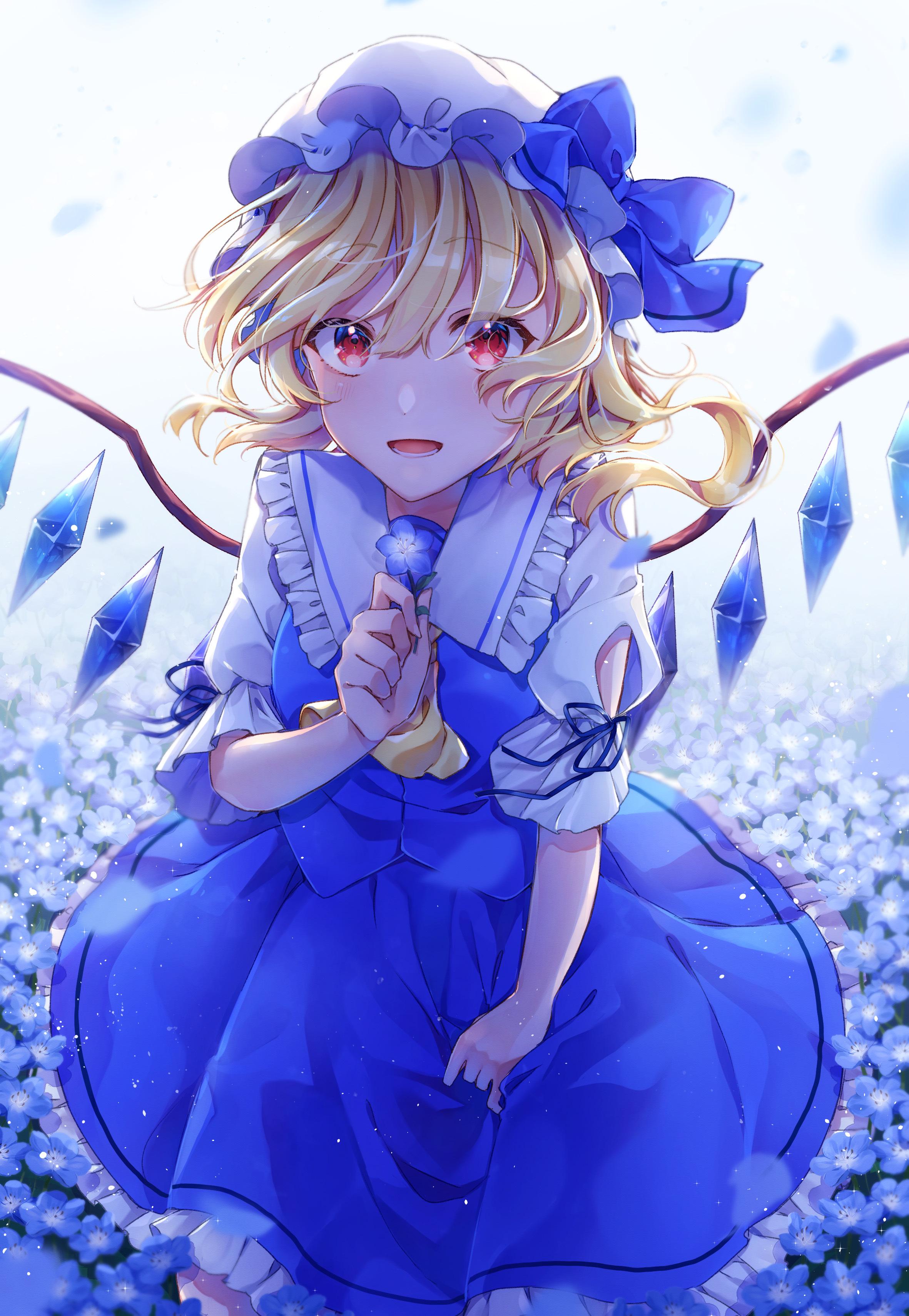 粉蝶花插画特辑 天蓝色的花海与碧空交织