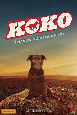Koko:红犬历险记 Koko: A Red Dog Story