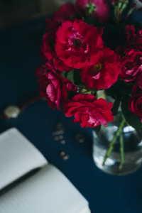 娇艳欲滴的红色玫瑰高清特写图集