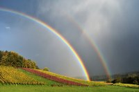 美好又治愈的七色彩虹高清特写图集