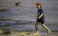 在海滩上玩耍的小男孩摄影图片
