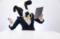 穿着西装戴着奶牛头套的男子摄影图片
