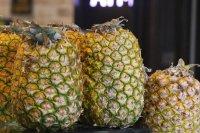 酸甜可口的热带水果菠萝高清电脑壁纸