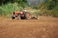田地里辛勤劳作的农民们摄影图片