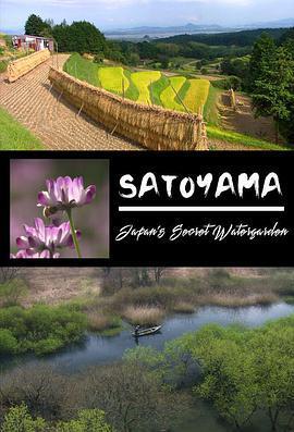 自然世界里山日本神秘水上花园