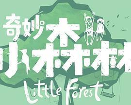 奇妙小森林(综艺)