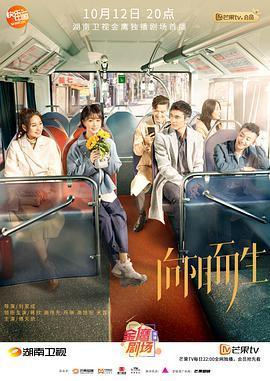 向阳而生DVD版(国产剧)