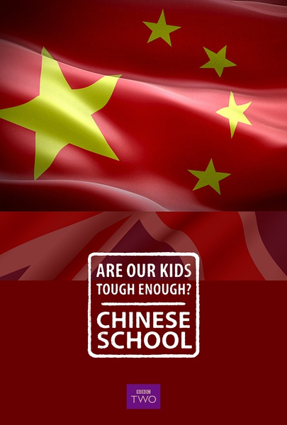 我们的孩子足够坚强吗?中式学校 全集 2015.HD720P 迅雷下载