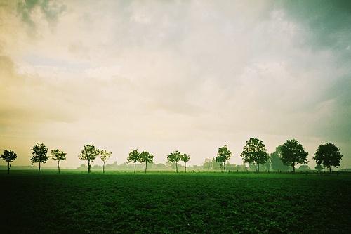 晚安心语130812:如果爱情黯淡,就让回忆灿烂