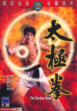 太极拳1974完整版
