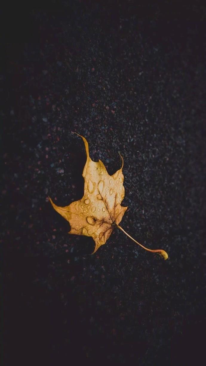 晚安心语图片 唯美 晚安心语图片 正能量 一句话