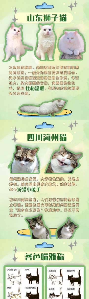 有人整理了中华田园猫的区别...