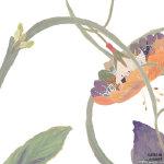 摇摆的一朵南瓜花动画gif动态图片