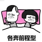 委屈脸暴漫表情:各奔前程型睡觉