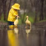 小孩与小黄鸭桌面人体艺术摄影